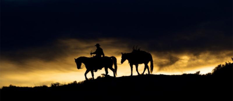 A lone cowboy leads a pack horse carrying a large set of antlers