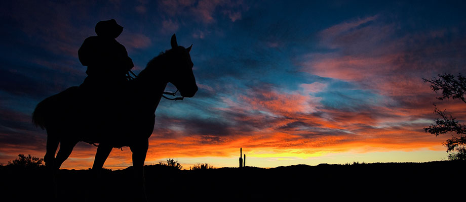 Cowboy rides the ridge at sunrise
